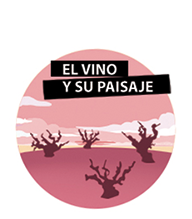 Experiencia enoturísitica El vino y su paisaje